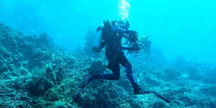 Bunaken-Arne-Redsted-fanger-havslange1