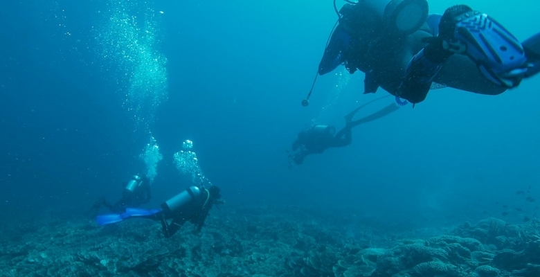 Kri-dykker-afsøger-rev-for-havslanger1
