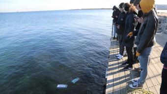 Øresund under overfladen