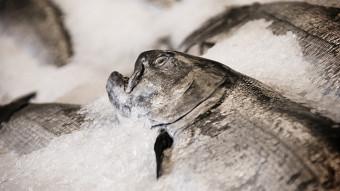 Spis fiskeflæsk til jul (og ja, det smager fantastisk!)