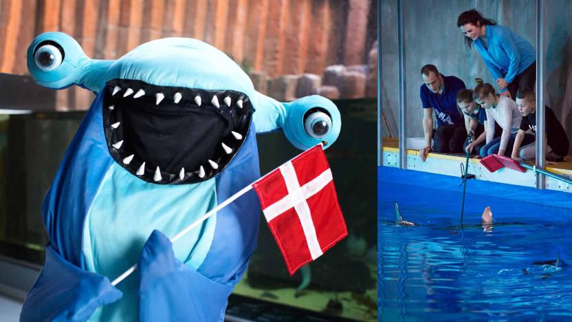 Sjov Børnefødselsdag I København Den Blå Planet
