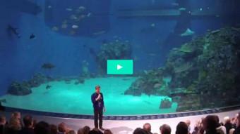 En helt usædvanlig oceanfodring med verdensrekordmaleri