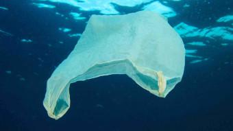 4 måder plastik skader havet på