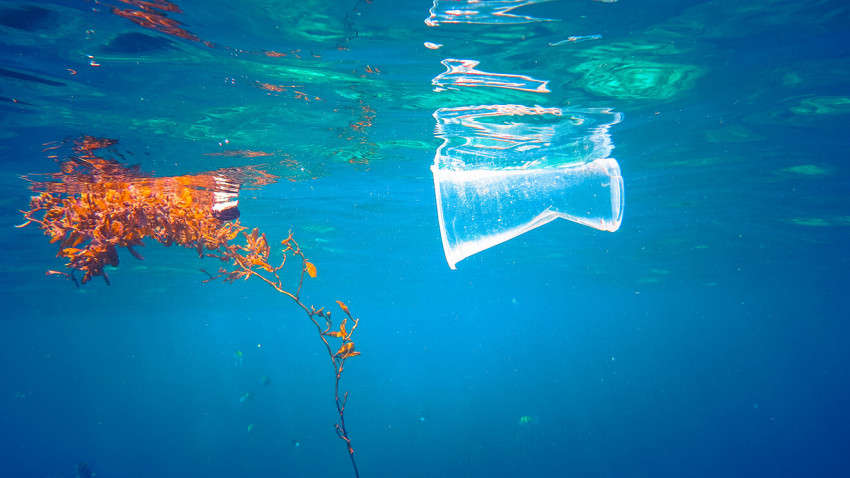 An Ocean free of Plastic