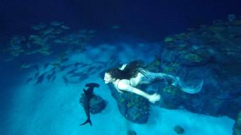 Sådan bliver du havfrue