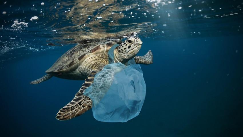For børn: Temadage om plastik