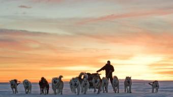 Siriuspatruljen – 10.000 kilometer med hundeslæde