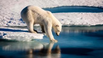 Det ekstreme klima – et Arktis og en klode under forandring