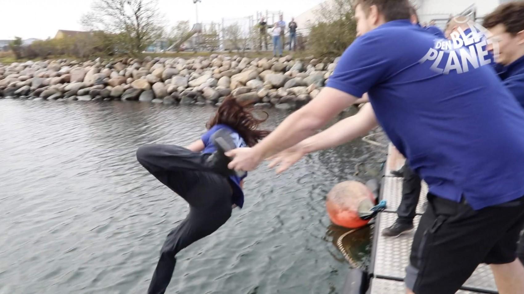 Dyrepassere blev kylet i havet