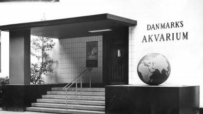Den Blå Planet, Danmarks Akvariums 80 års jubilæum