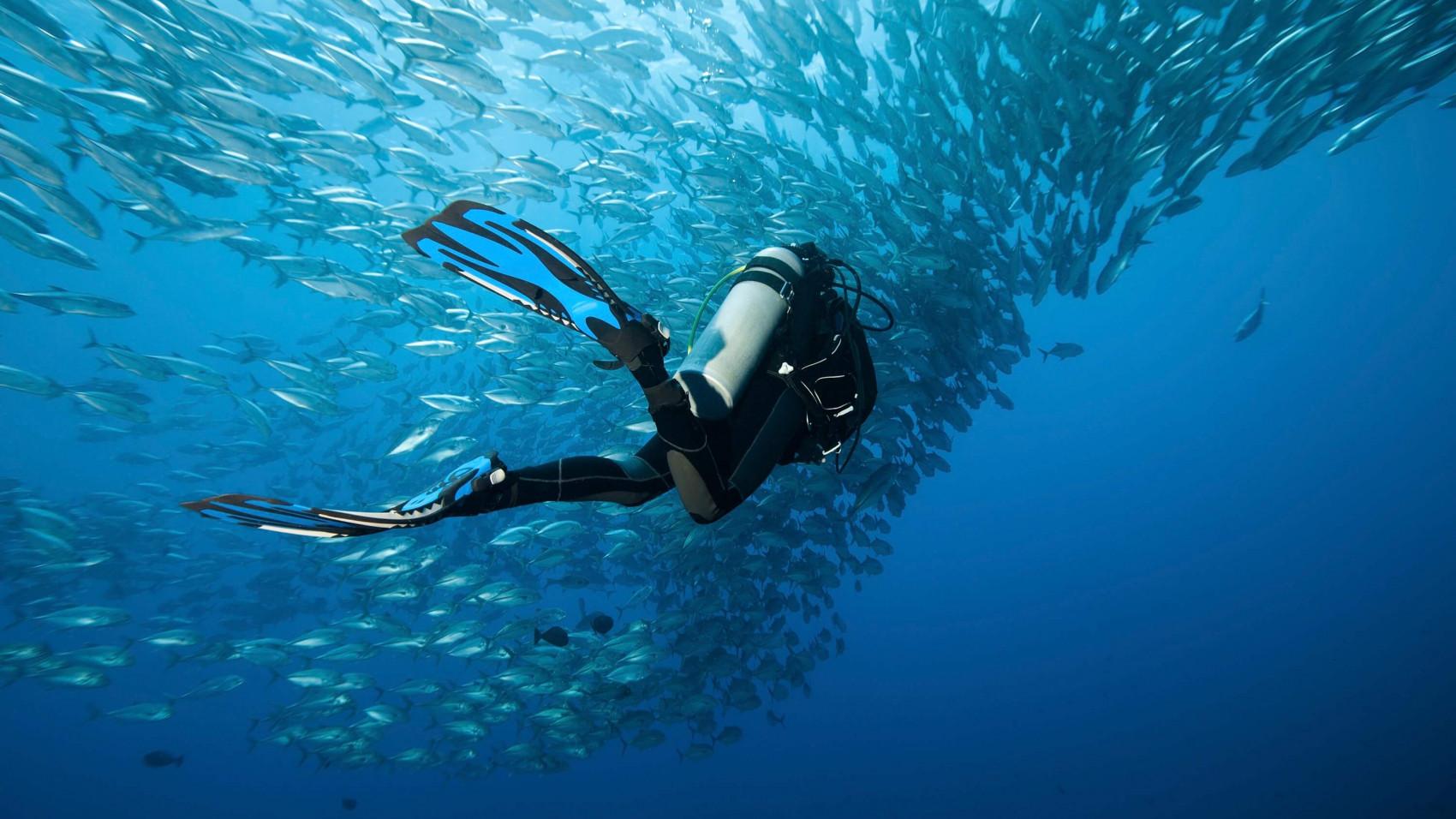 Havområde på størrelse med Indien er nu beskyttet