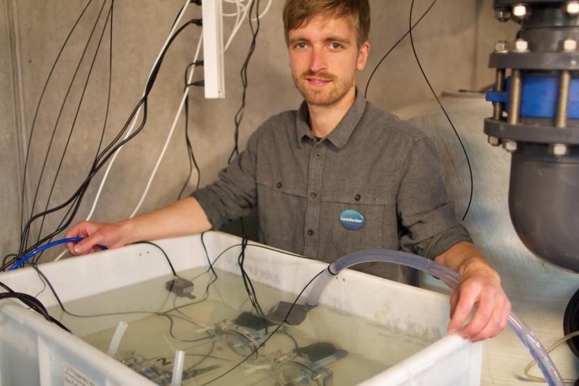 Forsker Emil Flindt undersøger sortmundet kutlinger i Den Blå Planets kælder.