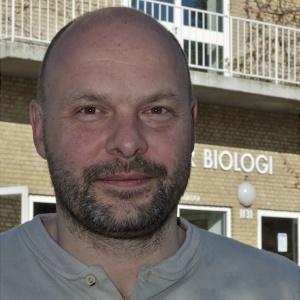 Tobias Wang